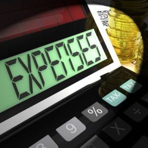 Categorize Living Expenses